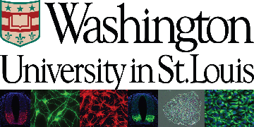 Kristen Kroll's laboratory at Washington University School of Medicine logo