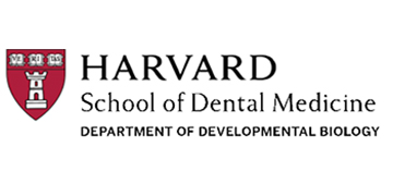 HSDM Department of Developmental Biology, Yang laboratory  logo