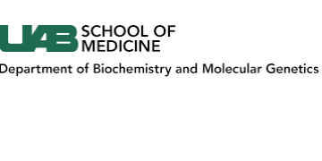 University of Alabama at Birmingham Department of Biochemistry and Molecular Genetics logo