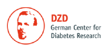 Partner of German Center for Diabetes Research logo