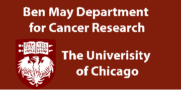 Ben-May Department for Cancer Research, The University of Chicago logo