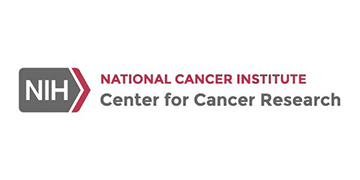 National Cancer Institute - Division of Cancer Treatment and Diagnosis logo
