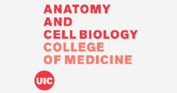 Postdoctoral Research Associate Anatomy And Cell Biology Job With