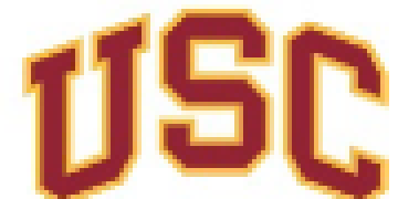 University of Southern California: Division of Pulmonary, Critical Care and Sleep Medicine logo