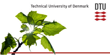 Department of Chemistry, Technical University of Copenhagen logo