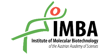IMBA- Institute of Molecular Biotechnology logo